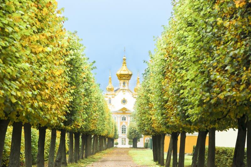Download Capilla en St Petersburg foto de archivo. Imagen de árboles - 41900268