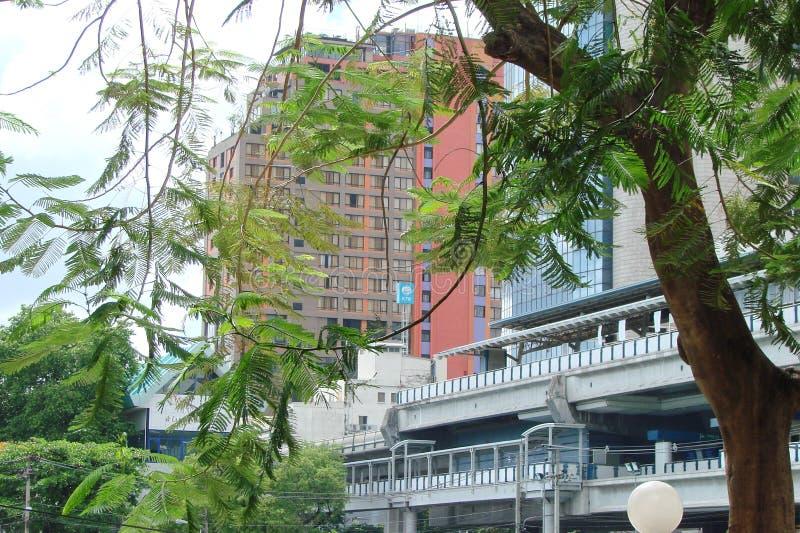 A capital de Tailândia é a cidade de Banguecoque Beleza e grandeza do palácio real imagens de stock