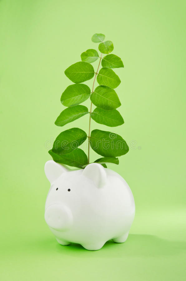 Capital growth or good investment. Piggy bank with plant growing from coin slot symbol of capital growth or good investment stock images
