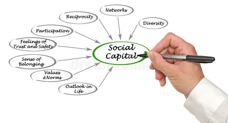 Capital social imagem de stock royalty free