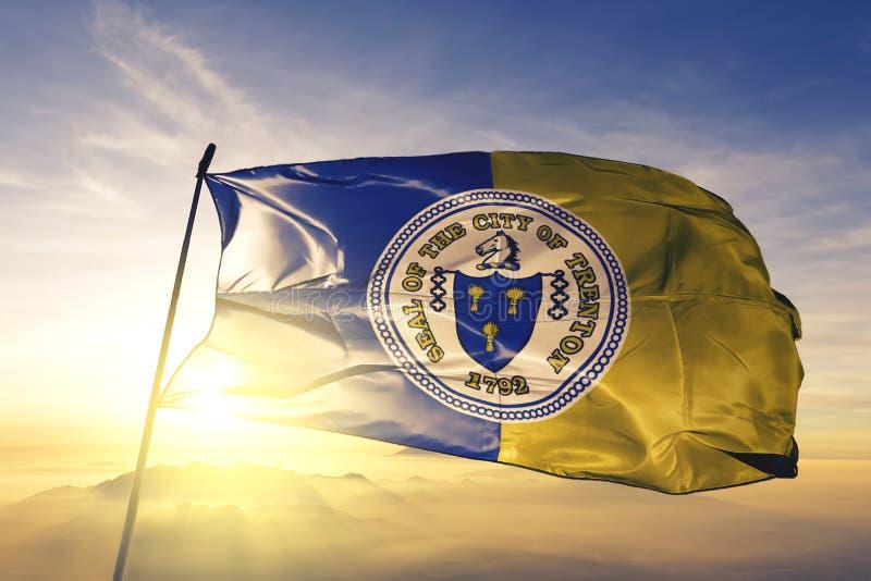 Capitale della città di Trenton del New Jersey del tessuto del panno del tessuto della bandiera degli Stati Uniti che ondeggia su illustrazione di stock