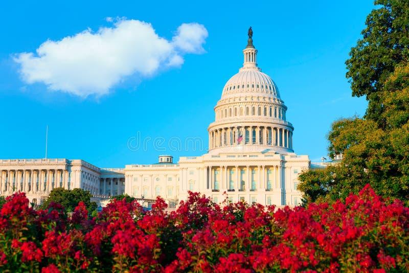Capitol που χτίζει το συνέδριο του Washington DC ΗΠΑ στοκ εικόνες