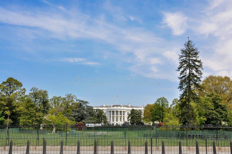 Te White House, Washington dc. Capitol america law congress states democracy washington dc architecture governing senate house legislation national mall building stock image