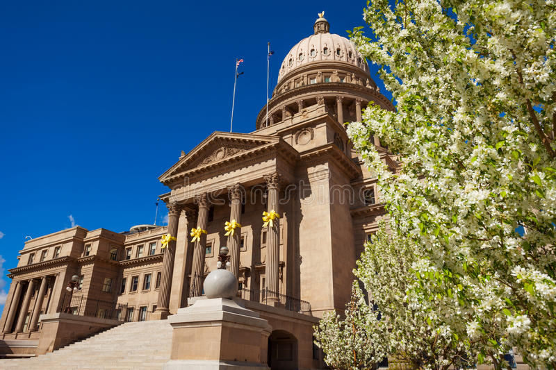 Capitol building in Boise and blooming flowers royalty free stock images