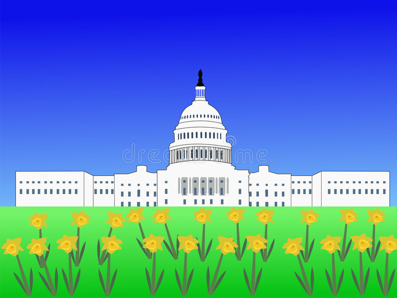 Download Capitol Degli Stati Uniti In Primavera Illustrazione Vettoriale - Illustrazione di americano, daffodil: 3142986