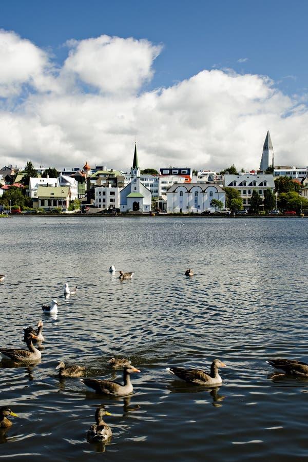 capitol iceland reykjavik arkivfoto