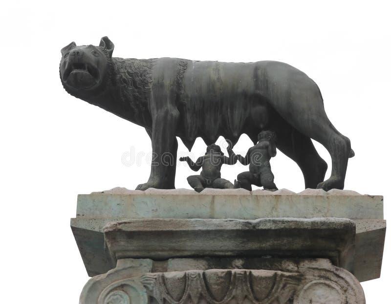 Capitoline狼叫在意大利语Lupa Capitolina是  免版税库存图片