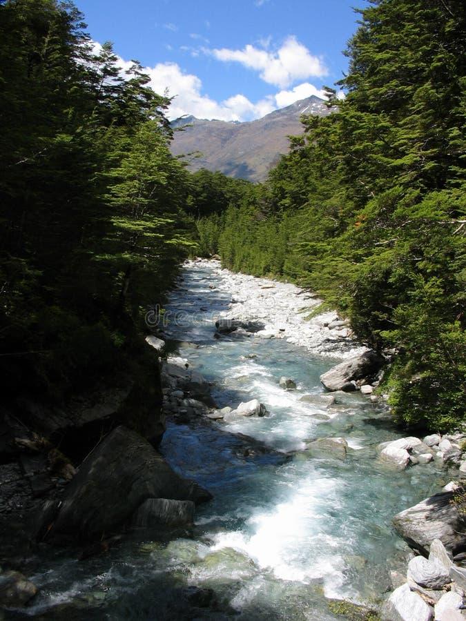 Caples Fluss lizenzfreie stockbilder