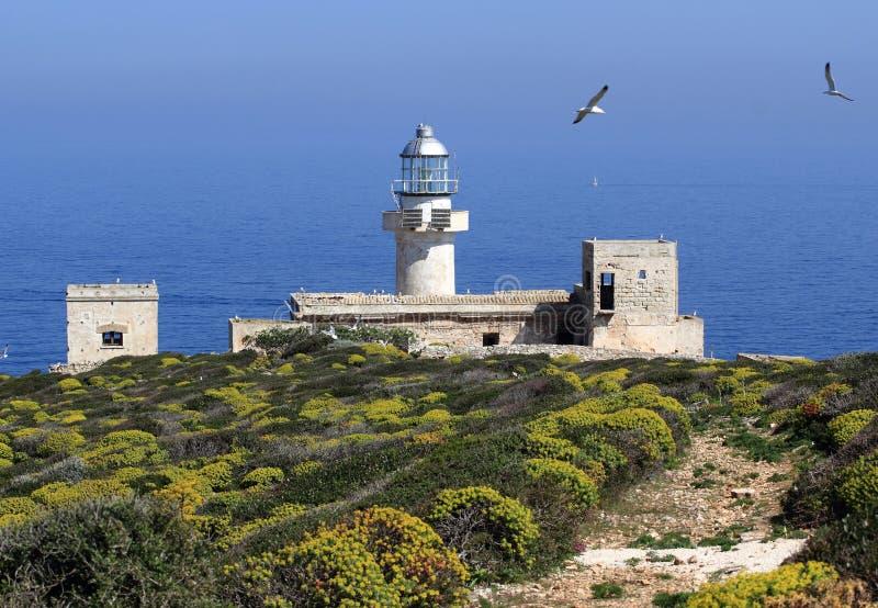Capo Grosso Leuchtturm stockbilder