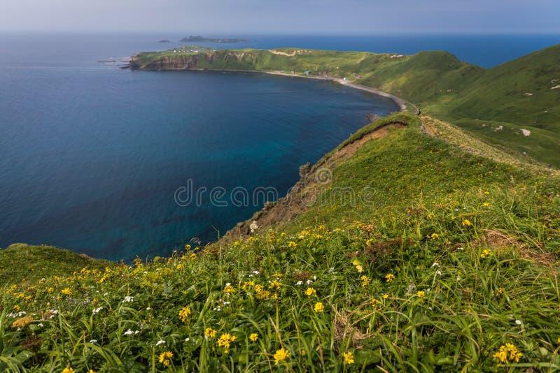 Capo Sukoton ed i Wildflowers del corso di giro del capo su Rebu fotografie stock