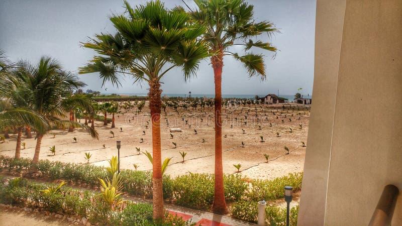 Capo Verde fotografia stock libera da diritti