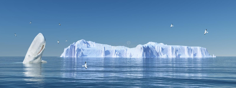 Capodoglio, gabbiani di mare ed iceberg illustrazione di stock
