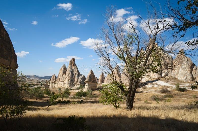 Cappadocia dalar och öknar som är berömda vaggar och grottahus arkivbilder