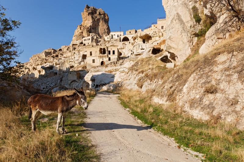 Donkey on the road to old town. Cappadocia, donkey on the road to old town, Turkey royalty free stock images