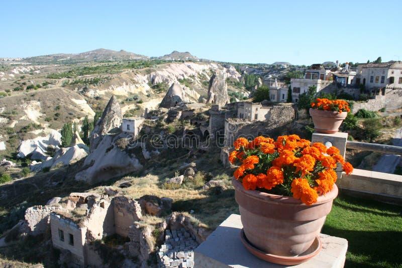 Cappadocia region i kwiaty zdjęcie stock
