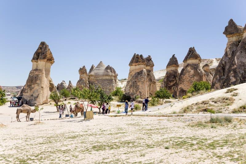 Cappadocia Turkiet Scenisk sikt av pelarna av att rida ut i dalen av munkarna (Pashabag) royaltyfria bilder