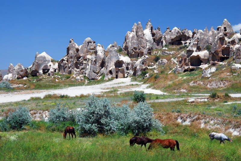 Cappadocia/Turkije royalty-vrije stock foto