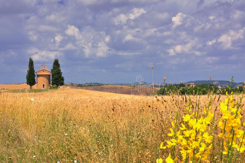 Cappella di Vitaleta , Val d`Orcia in Tuscany. stock photography