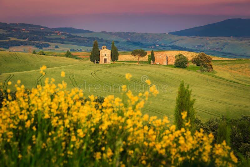 Cappella vitaleta nei campi di grano, nei pressi di Pienza, Toscana, Italia immagini stock libere da diritti
