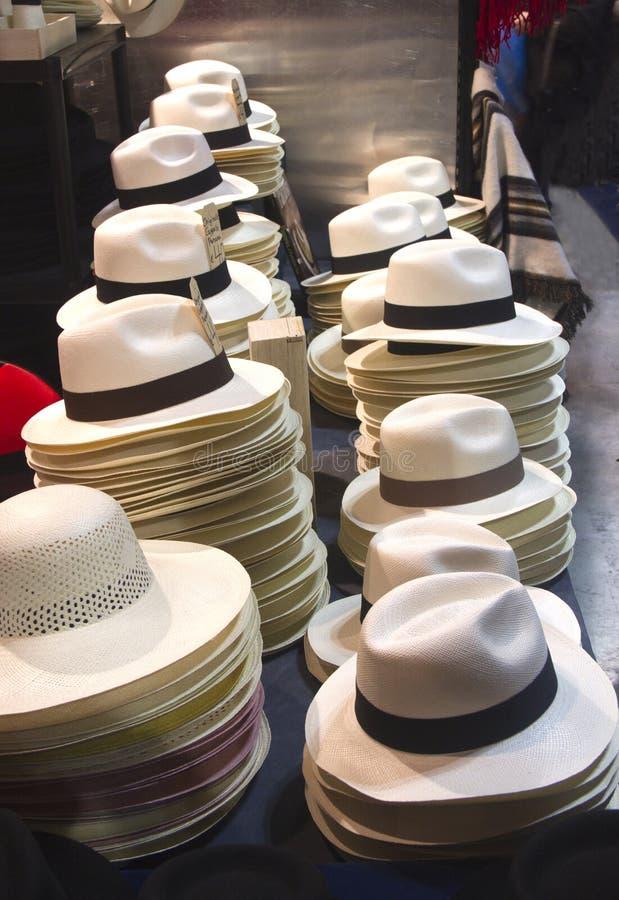 Cappelli per il sole fotografia stock libera da diritti