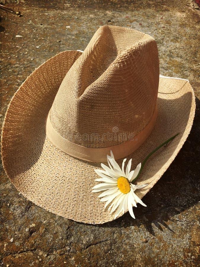 Cappello della margherita del cowgirl fotografia stock