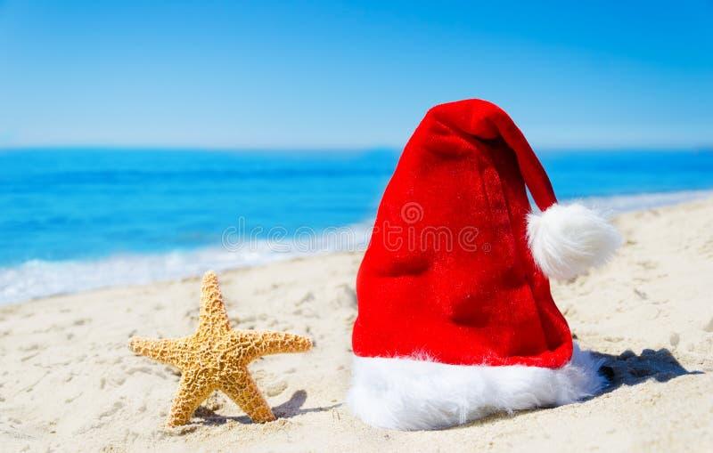 Cappello di Natale con le stelle marine sulla spiaggia immagine stock