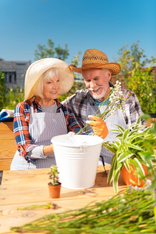 Cappello di paglia d'uso di bella signora anziana che tiene i fiori bianchi e porpora del campo fotografia stock