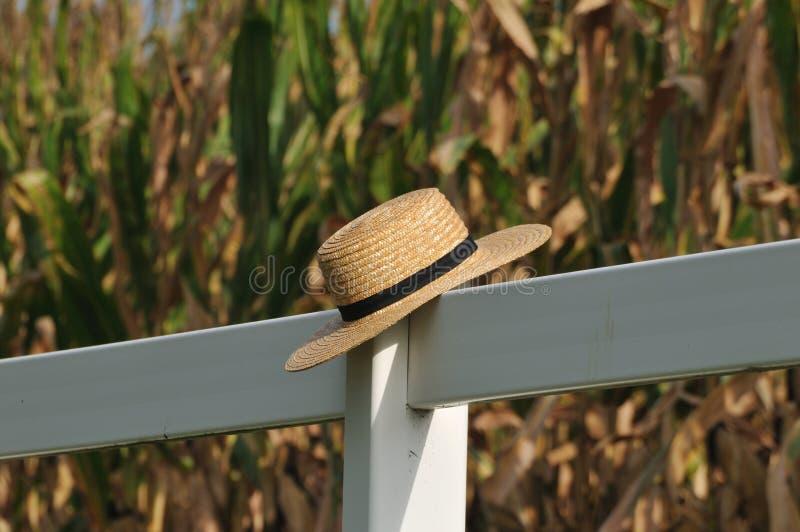 Cappello di paglia di Amish che pone sopra la trave con il campo di grano nelle sedere fotografia stock