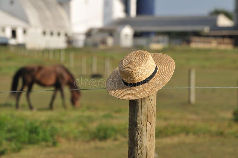 Cappello di paglia di Amish con l'azienda agricola nel fondo immagine stock
