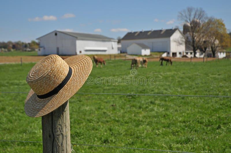 Cappello di paglia di Amish su un'azienda agricola della Pensilvania fotografia stock