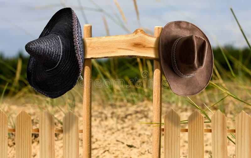 Cappello di Pointerwith due fotografia stock