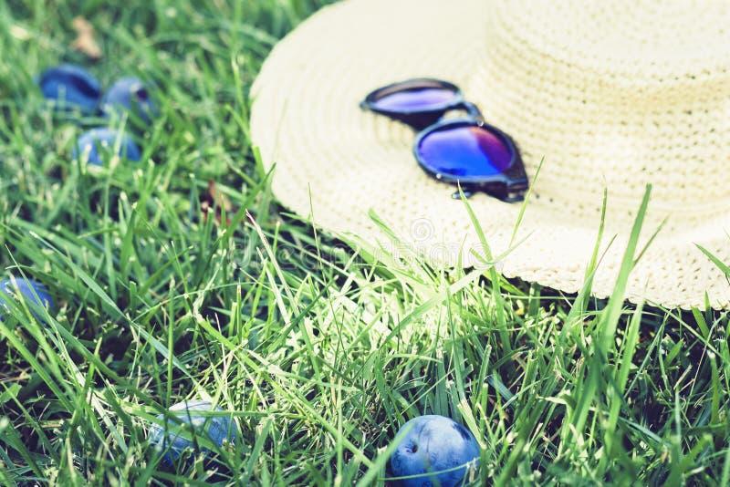 Cappello ed occhiali da sole di vimini femminili sul prato inglese sull'erba nel giardino con i susini immagine stock libera da diritti