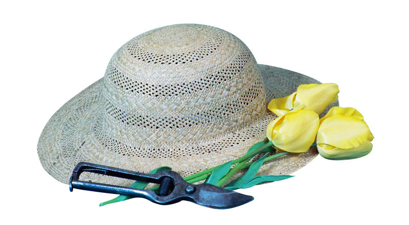 Cappello, fiore e secateur del ` s del giardiniere immagine stock