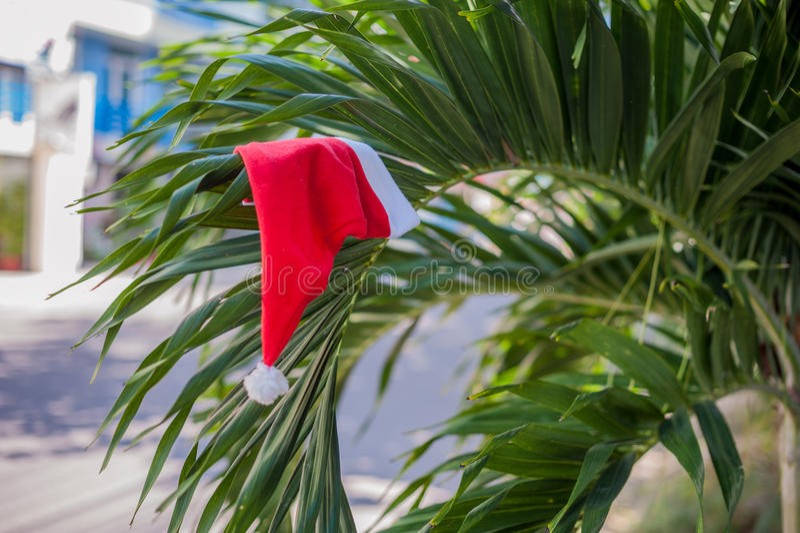 Cappello rosso del ` s di Santa che appende sulla palma alla spiaggia tropicale Natale nel concetto tropicale di clima immagini stock libere da diritti