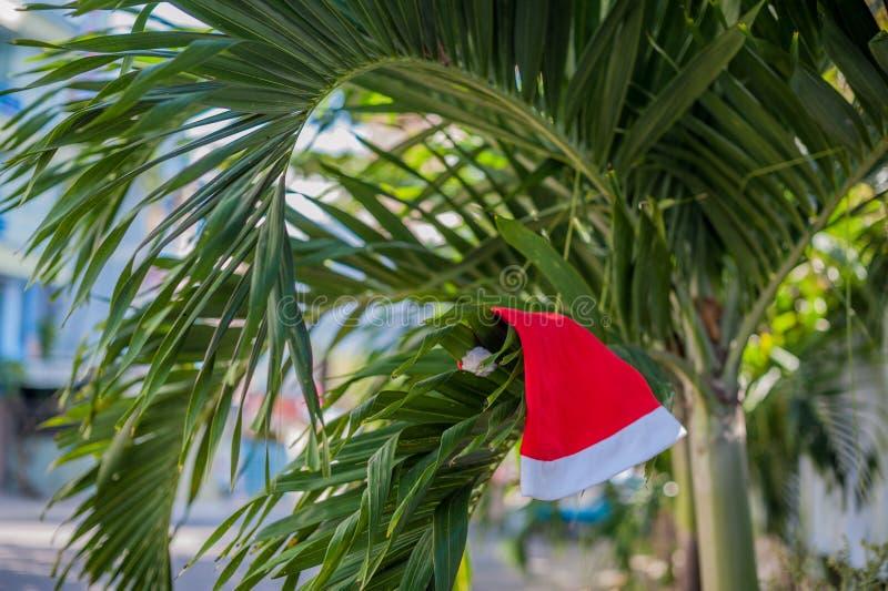 Cappello rosso del ` s di Santa che appende sulla palma alla spiaggia tropicale Natale nel concetto tropicale di clima fotografie stock libere da diritti