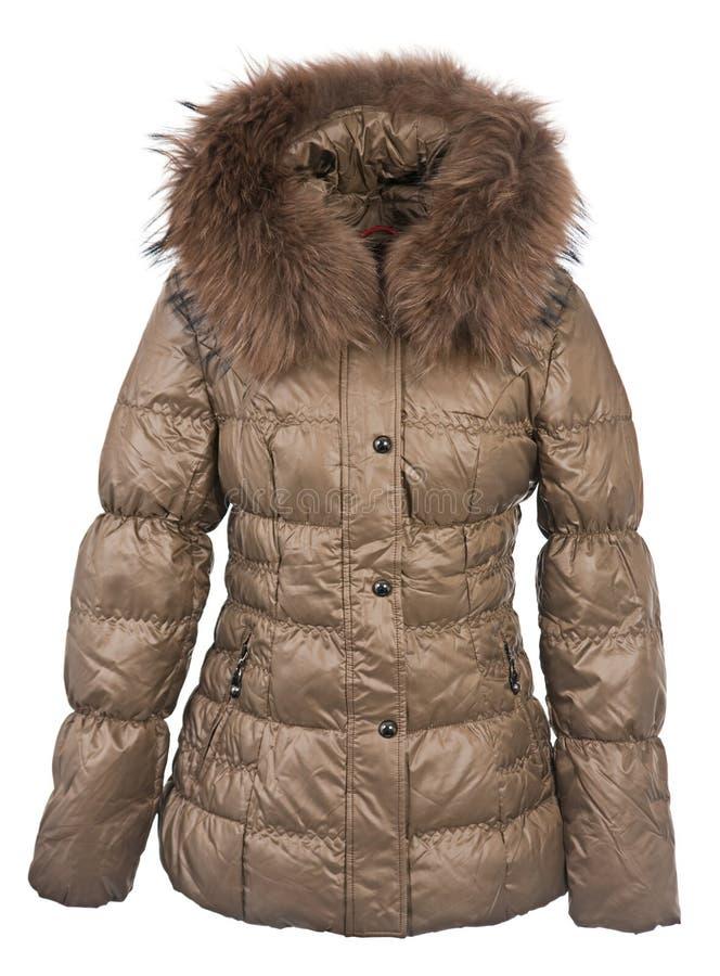 Cappotto di inverno delle donne immagine stock libera da diritti