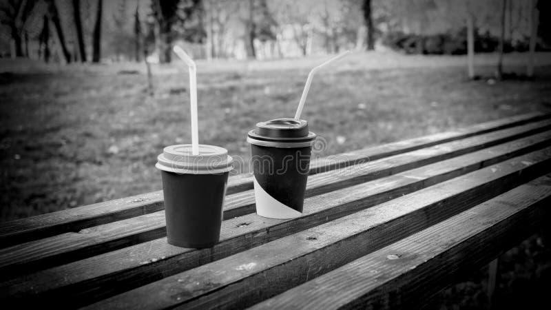 Cappuccino, πάρκο φθινοπώρου, πάγκος στο πάρκο, διάστημα αντιγράφων στοκ εικόνες