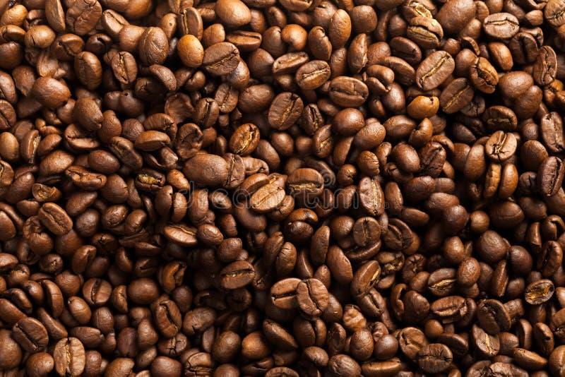 Download Cappuccino fotografia stock. Immagine di caldo, beens - 117980458