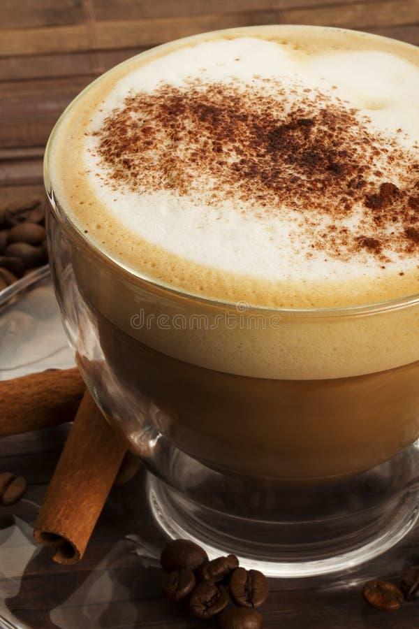 Cappuccino con la polvere del cioccolato e cannella stic immagine stock
