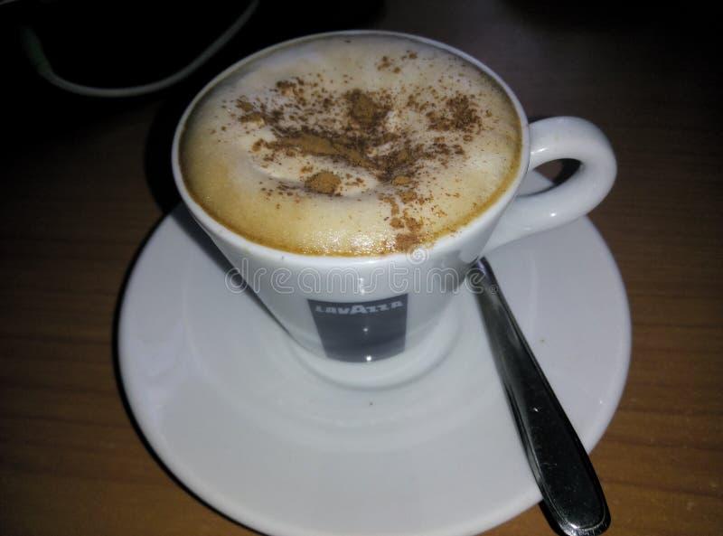 Cappuccino inwoner van Wenen royalty-vrije stock foto