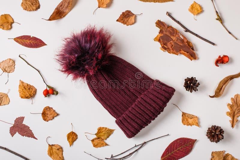 Cappuccio e foglie di autunno di lana caldi fotografia stock libera da diritti