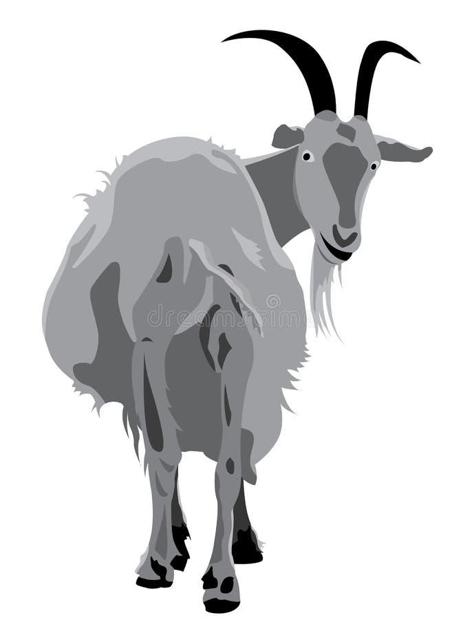 Capra cornuta illustrazione di stock