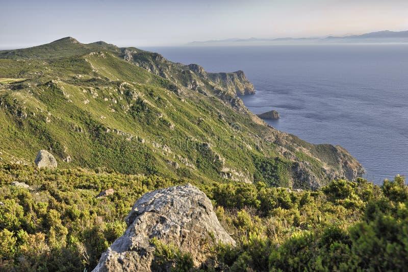 Capraia cliffs stock photography