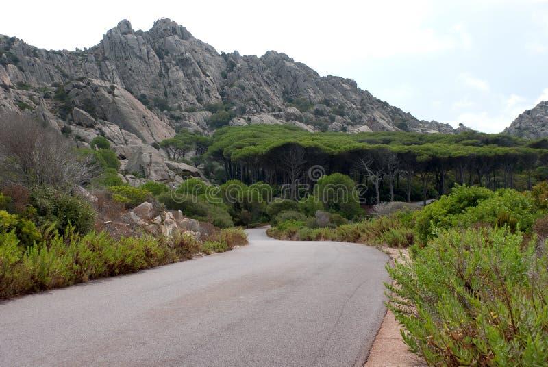 Caprera island road royalty free stock images