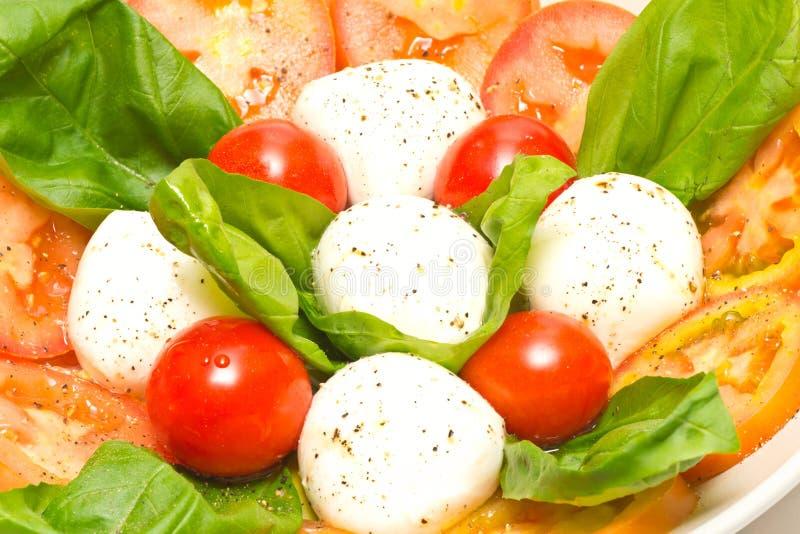 Download Caprese Salad Royalty Free Stock Photos - Image: 25692048
