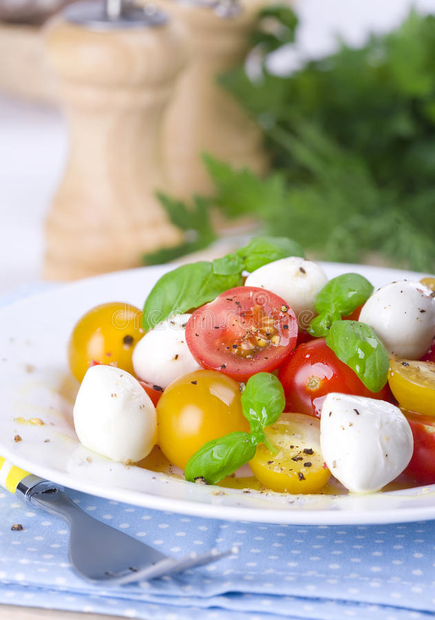 Download Caprese Salad stock image. Image of salad, cherry, pepper - 31463727