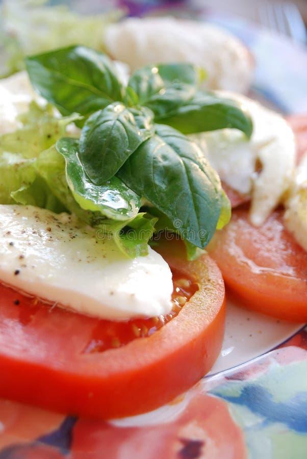 Caprese Salat lizenzfreie stockbilder