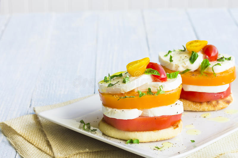 Download Caprese Stack stock photo. Image of image, meal, food - 39507904