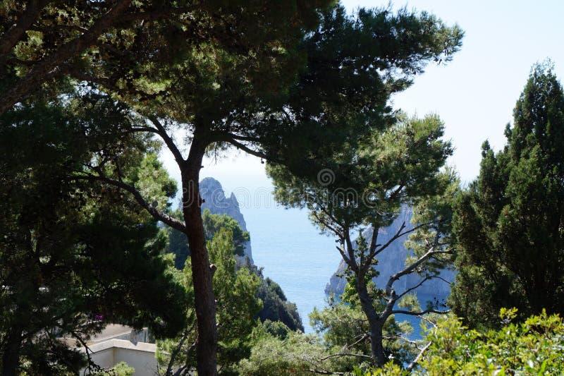 Capri Faraglioni royaltyfri bild