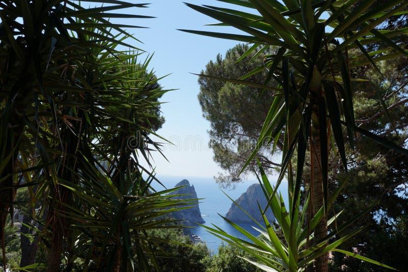 Capri Faraglioni royaltyfria foton